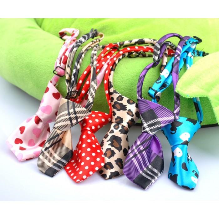 Corbatas para perros